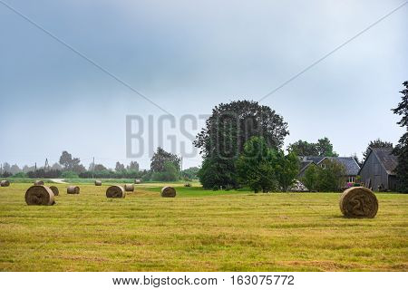 Beautiful landscape with straw bales in end of the summer.Harvested field