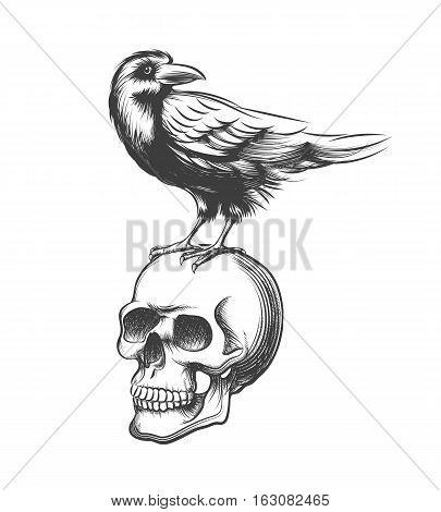 Evil crow hand drawn vector illustration. Black raven devil on skull isolated on white background. Tattoo raven and human skull