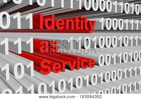 Identity as Service in the form of binary code, 3D illustration