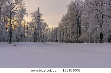Snow covered pond in the park with hoar frosted trees and picturesque sun set