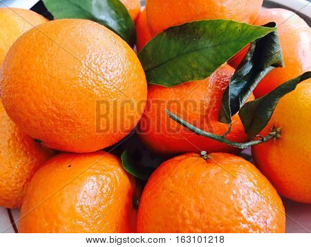 Full frame citrus Bunch of fresh vibrant oranges and clementines with leaves and stems from trees for healthy eating fruit background image, card or postcard with room for copy