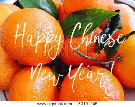 Happy Chinese New Year Good Fortune Fruit for fullness and wealth social media cyber card image for text message postcard poster or twitter good fortune wishes on Chinese New Year