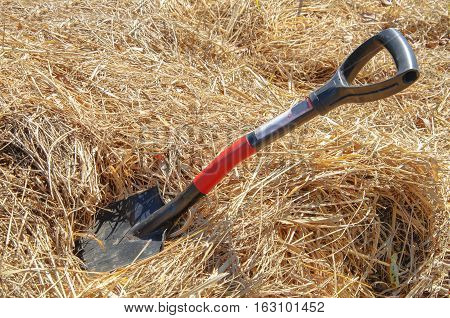 old Sapper shovel for digging earth in the garden