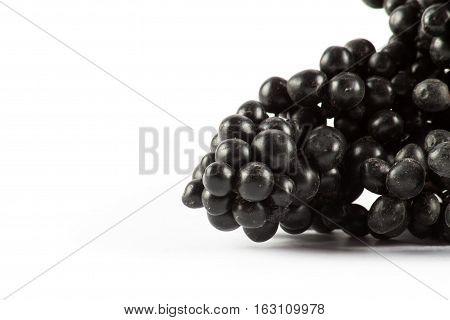 Ripe black rowan isolated on white background