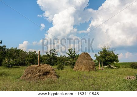 Haystacks on the summer meadow. Summer rural landscape.