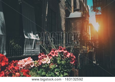 View from balcony of narrow street of Barcelona historical district El Born: facades flowers balconies and windows street lantern flag of Catalonia. Sunny summer day Spain.