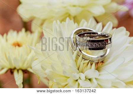 Wedding rings white dahlias love Valentine's Day flower