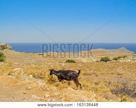 Saint Paul Bay And Beach In The Island Of Rhodes