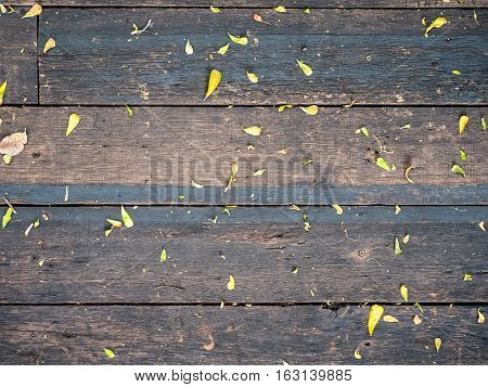 Wood Texture Background horizontal line with little leaves