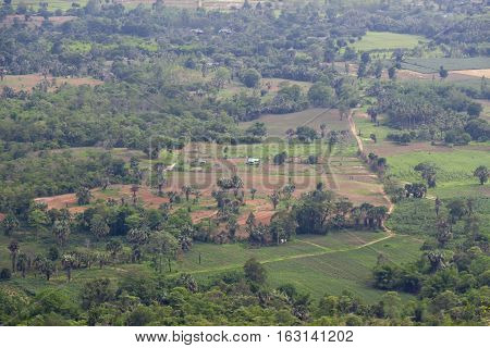 Countryside in Nakhon Ratchasima Province of Thailand