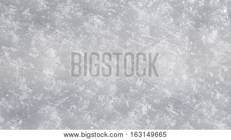 White Glitter from fresh snow texture background