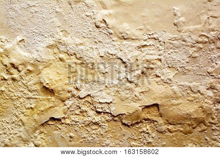 Wet walls covered with mold. Texture and background.