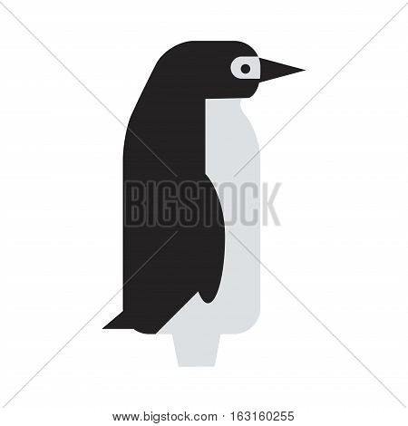Penguin vector illustration character. Cartoon funny cute animal isolated. Antarctica polar beak pole winter bird. Funny outdoors wild life south character arctic.