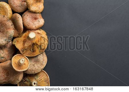 Mushrooms Stacked On A Black Background.