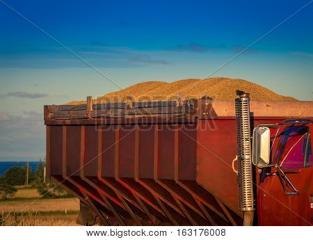Truck load of grain in rural Prince Edward Island