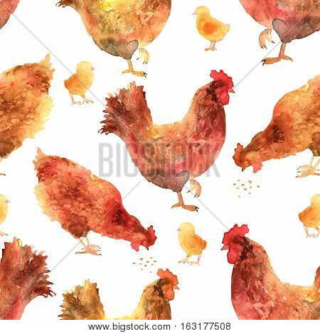 Hand drawn seamless pattern in watercolor. Chickens baby chick and rooster illustrations. Rural natural bird farming.