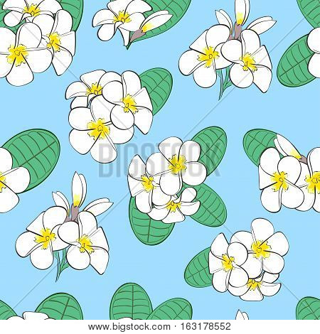 Floral seamless pattern. White flowers plumeria background.
