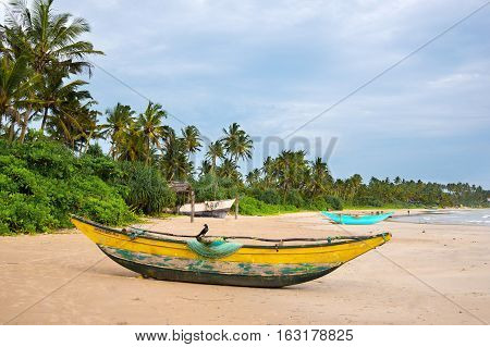 Green palms and fishermen's boats at empty beach in Weligama Sri Lanka