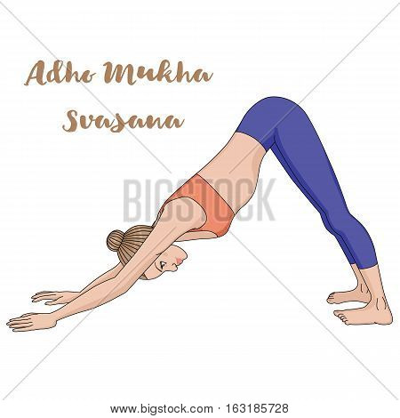 Women silhouette. Adho mukha svanasana. Downward dog. Vector illustration