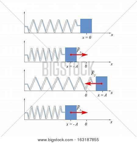 Illustration load fluctuations on the spring will help explain to students the oscillatory motion, the concept of displacement and harmonic oscillations. poster