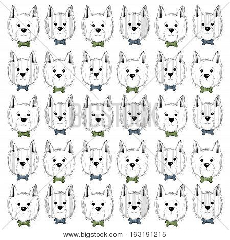 west highland white terrier scetch pattern. Can be used like post card, background or banner