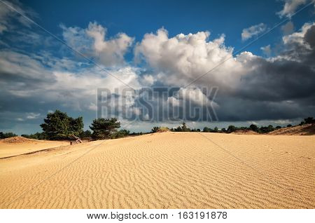 beautiful cloudy sky and sand dune in summer