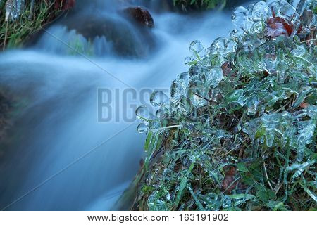 frozen grass by mountain river in winter