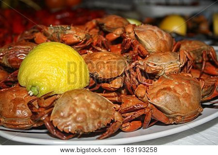 Seafood is a versatile protein food d
