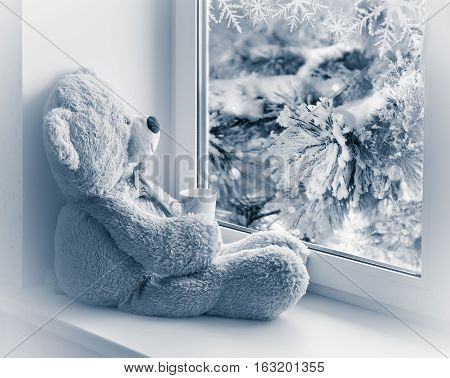 bear sitting and looking in the window with a cup