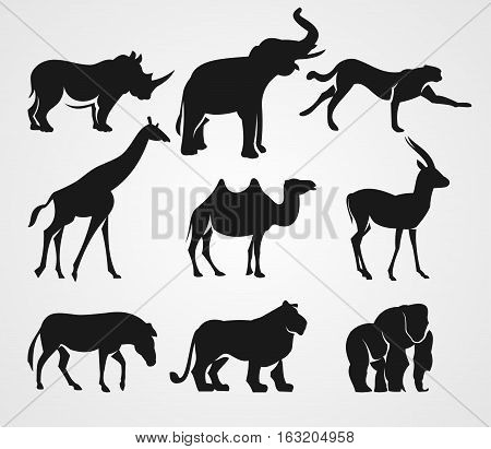 Set of African animals. Rhino, elephant, cheetah, giraffe, camel, gazelle, zebra, lion and gorilla