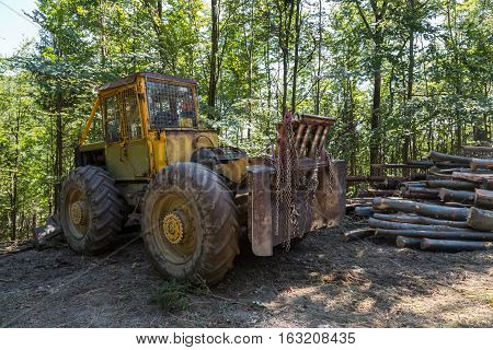 Industrial tractors for transporting trees timber in the woods near a pile of logs