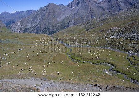 landscape in gran paradiso national park in italy