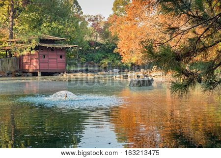 Sydney, Australia - May 22, 2016: At the popular Auburn Botanic Gardens, Japanese Zen Gardens section featuring the Ryoan-ji style designs. A traditional rest house is shown with water and rock features.