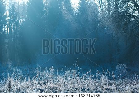 Rural Landscape With Winter Hoarfrost