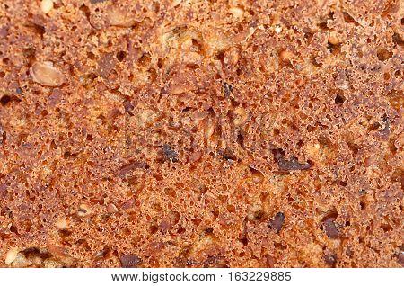 The Grain Bread Close Up