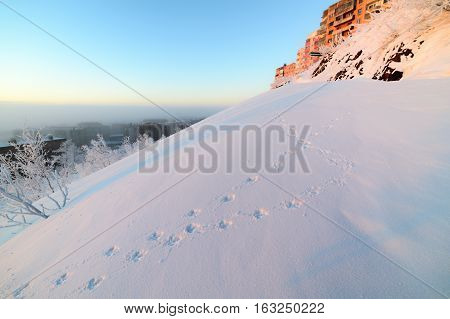 Snow-covered mountain slope with animal tracks in the snow.