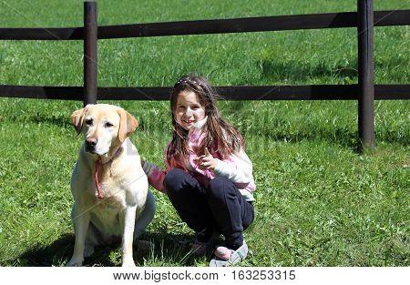 Young Girl Playing With Dog Labrador Retriever Dog