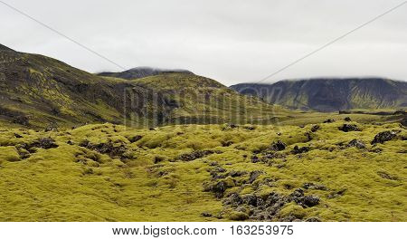 Rocky terrain of Iceland. Summer landscape in Iceland.