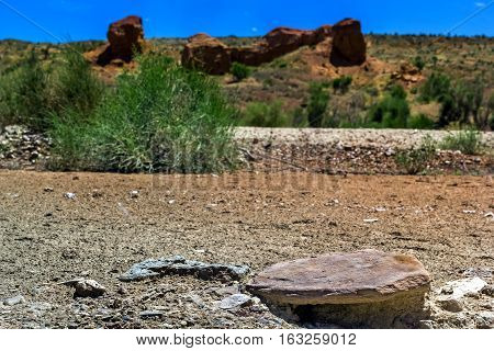 stony desert on a background of red rocks and blue sky