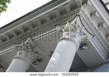 Capital gray closeup Corinthian columns on a building facade.