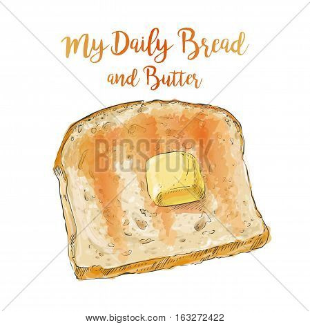 Toasted whole Sliced grain bread with a pat of butter isolated on white background top view vector illustration isolated