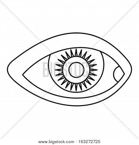 Human eye icon. Outline illustration of human eye vector icon for web