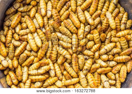 Edible roasted and spiced meal worms Bugs fried on street food in Thailand Fried silk worm is the food in Thailand