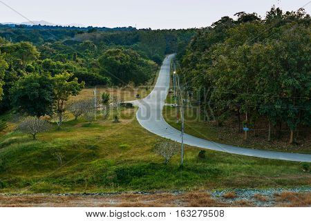 Landscape Holiday countryside road with tree green wayside