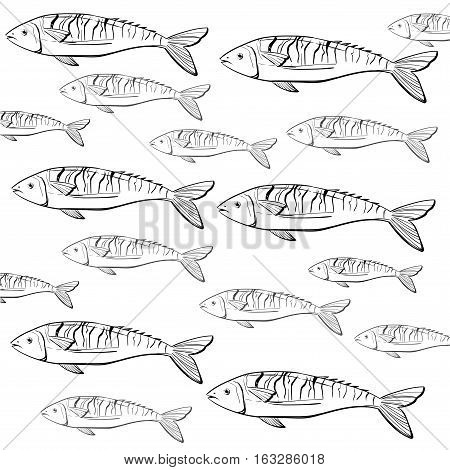 Hand drawn. Vinyage fish pattern can be used for fish market, restaurant  background or banner