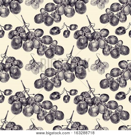 Seamless pattern with grapes drawn by hand with pencil. Healthy vegan food. Fresh tasty fruits and berries painted from nature. Tinted black and white
