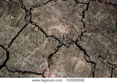 Surface of a grungy dry cracking parched earth texture background