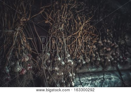 tufts of dry garlic, a wooden wall, vegetable