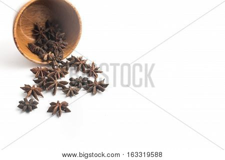 Anise Star Spice isolated on white background