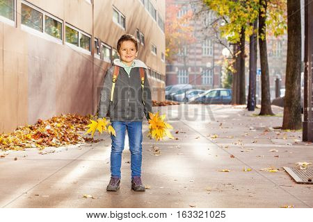 Happy schoolboy going to school with rucksack, holding two bunches of yellow leaves in his hands